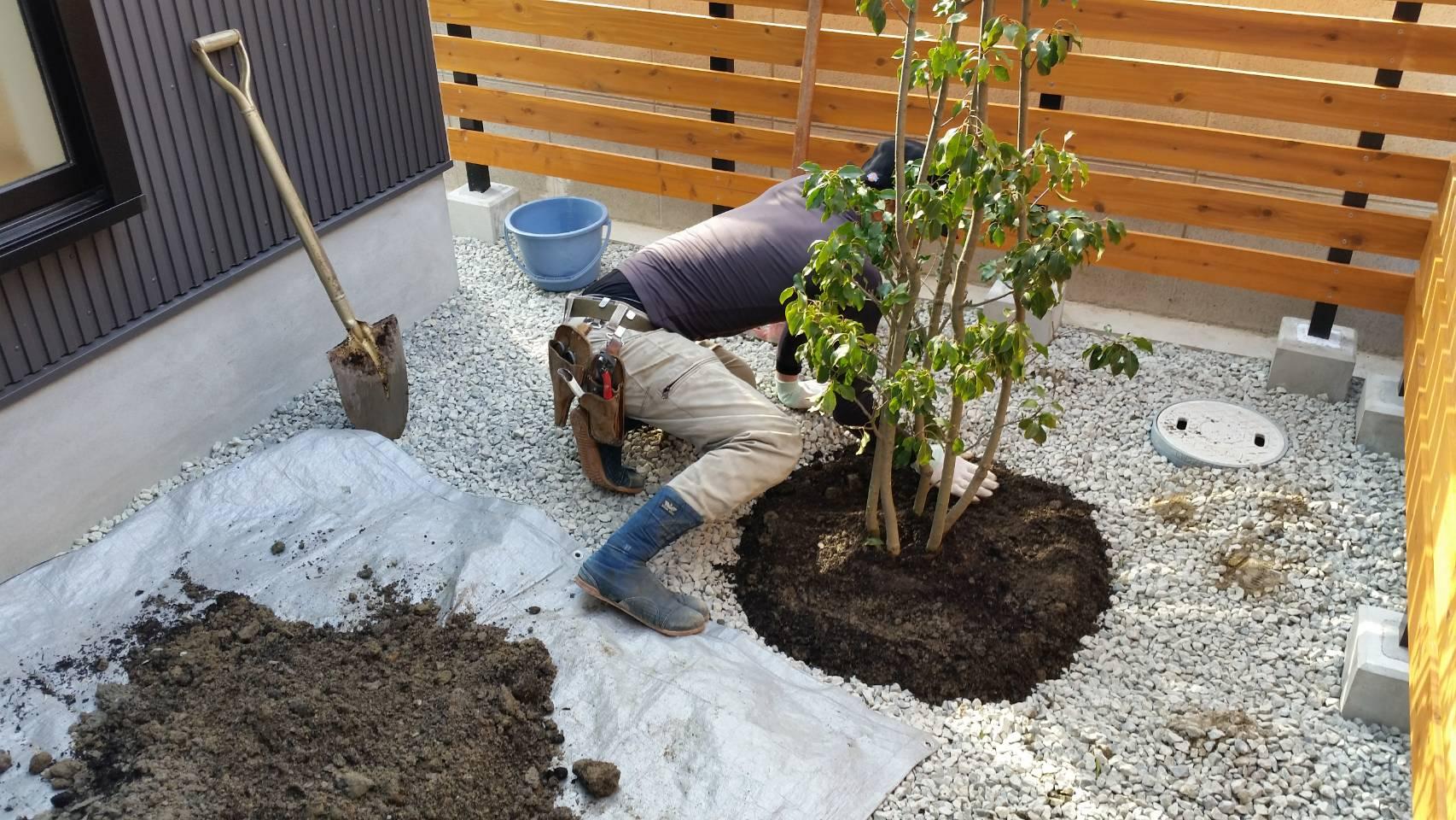 植木剪定・草刈り・高木伐採